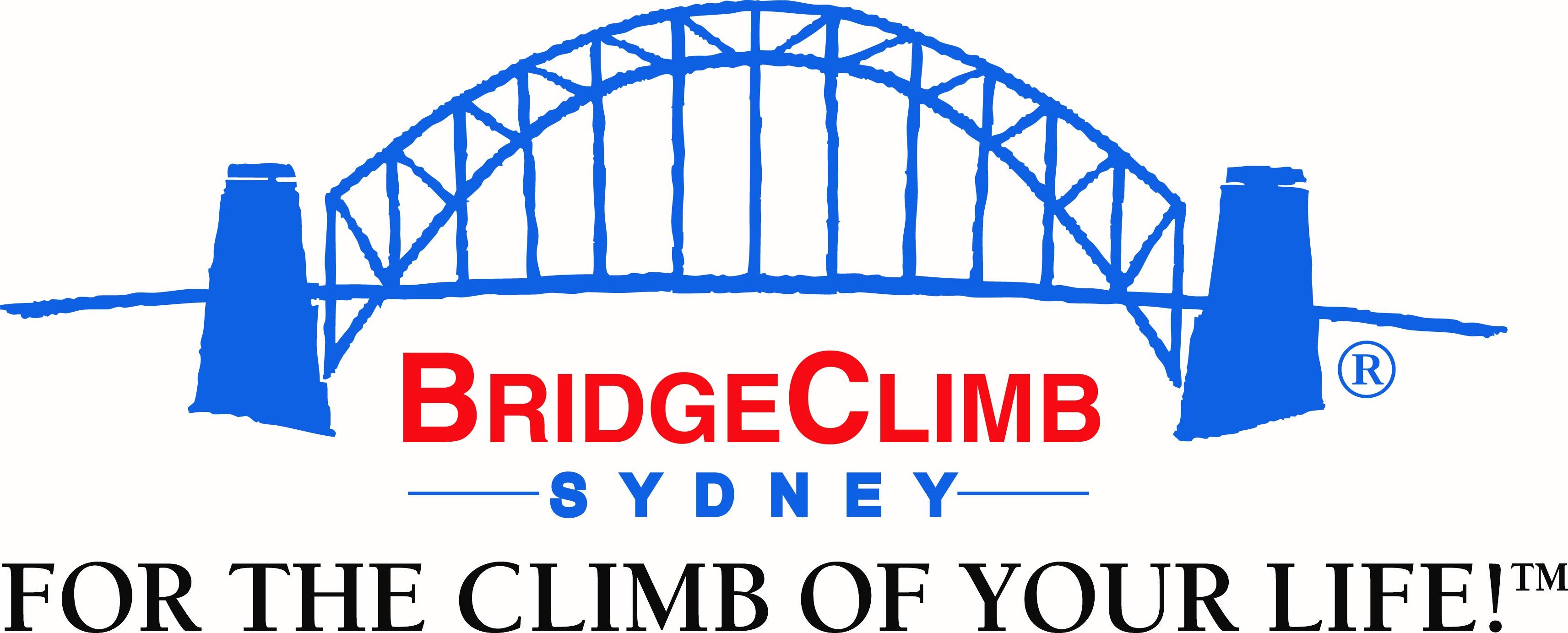 Bridge Climb Sydney image
